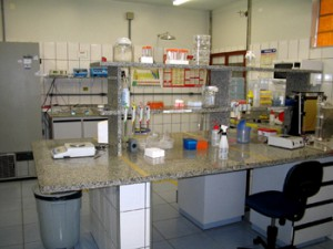 Lab. de Morfofisiologia Molecular e Desenvolvimento (LMMD)