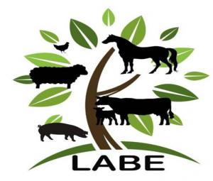 Logo LABE