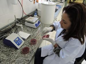 Laboratório de Biomateriais e Biossensores (BIOLAB)