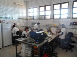 Laboratório Multiusuário de Análises Clínicas Veterinárias