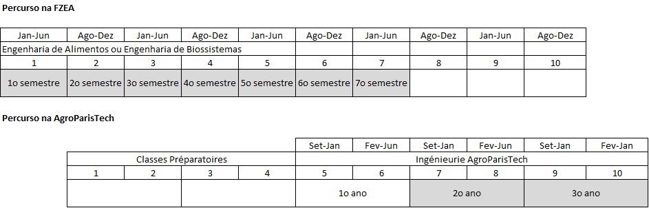 Plano proposto para o percurso dos estudantes da FZEA/USP para a <em>AgroParisTech</em>