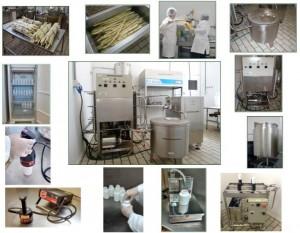 Lab. Planta Piloto de Processamento de Alimentos (ZEA)