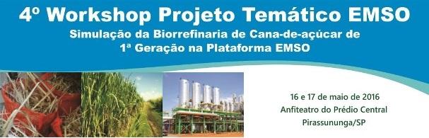 Banner 4º Workshop Projeto Temático EMSO