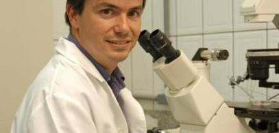 Flávio Vieira Meirelles