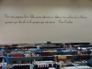 08/08/2017 - Acervo Biblioteca FZEA. Foto: Marcelo Roberto Dozena.