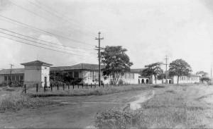 Edifício Prof. Dr. João Soares Veiga, atuais instalações do Departamento de Zootecnia (ZAZ) da FZEA, décadas de 60/70. Foto: Acervo Digital FZEA.
