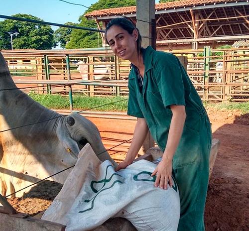 Suplementação da ração de bovinos com selênio<br />(foto: Susana Nori de Macedo / FZEA-USP)