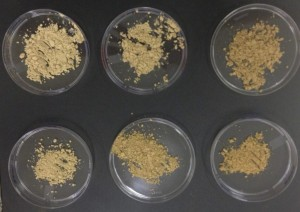 Diferentes concentrações de extratos em microcápsulas – Foto: Cedida pela pesquisadora