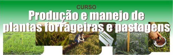 Banner Produção e Manejo de Plantas Forrageiras e Pastagens